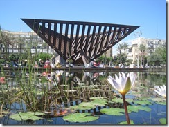 Goldfish pond in front of the memorial at Rabin square.