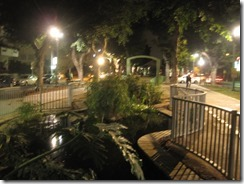 A garden-style pool of water in the midst of a promenade.